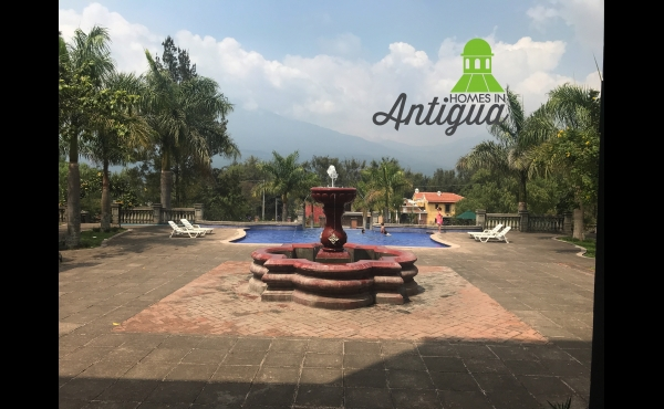 Antigua Gardens T024